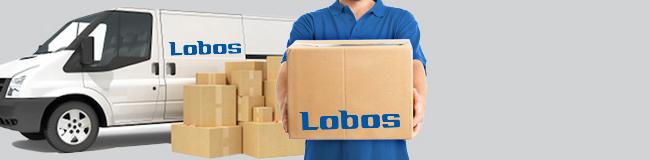 Koszt i sposób dostawy Lobos